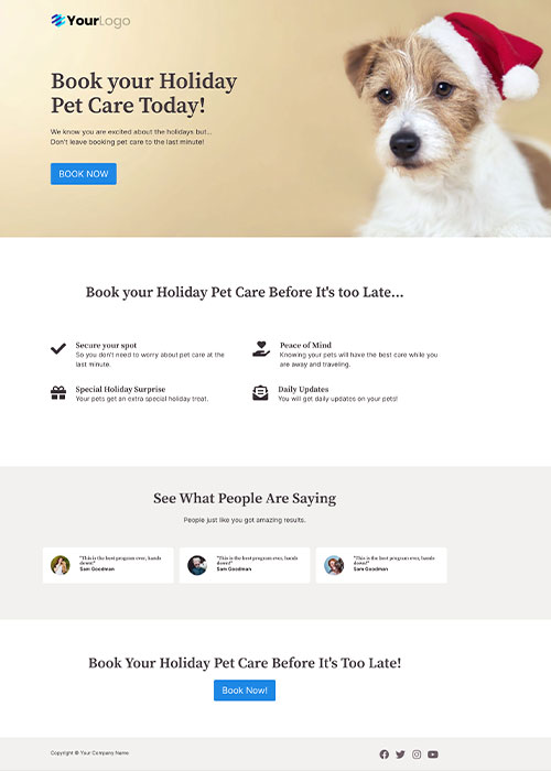 Sales Landing Page Layout Two
